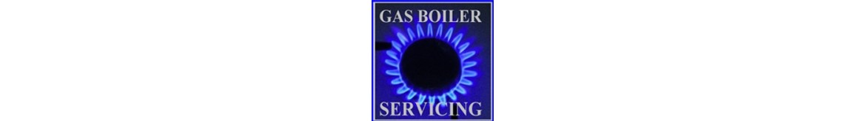 Natural Gas Boiler Service